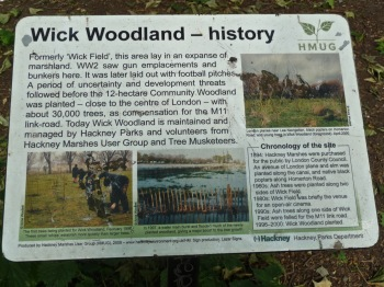 wick wood info